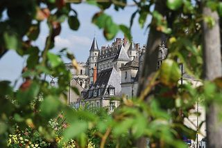 6. Chateau at Amboise
